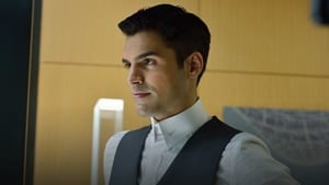 Incorporated 1×1