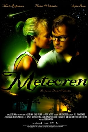 The Meteor (2010)