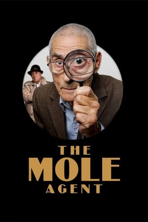 Play The Mole Agent