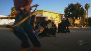 Online CSI: Miami Temporada 5 Episodio 14 ver episodio online Tierra de Nadie (1ª parte)