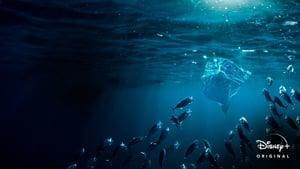 Sea of Plastic (2020)