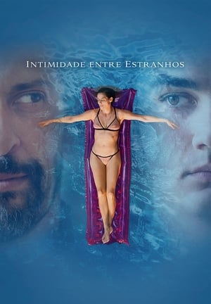 Intimidade Entre Estranhos Torrent, Download, movie, filme, poster