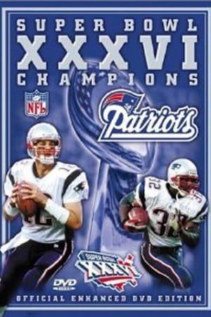 Super Bowl XXXVI Champions: New England Patriots
