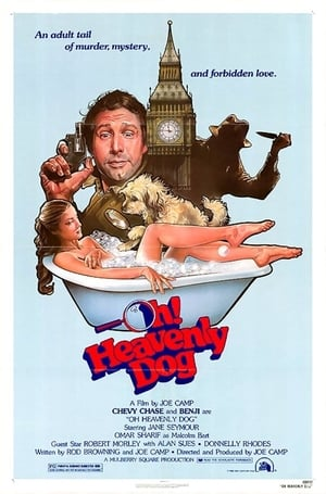 Poster Oh Heavenly Dog (1980)