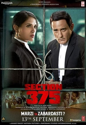 Section 375 (2019) Bollywood Full Movie Watch Online Free Download HD