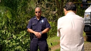 Hawaii Five-0 Season 1 :Episode 18  The Long Goodbye