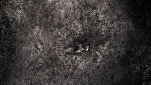 Captura de Urubú (2020)