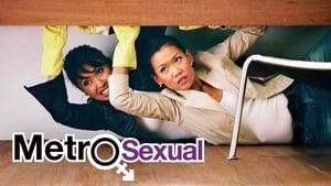 Metlogs (Metrosexual Adventures)