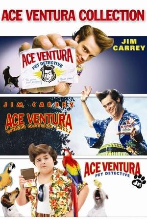 Assistir Ace Ventura Coleção Online Grátis HD Legendado e Dublado