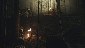 The Veil of Twilight