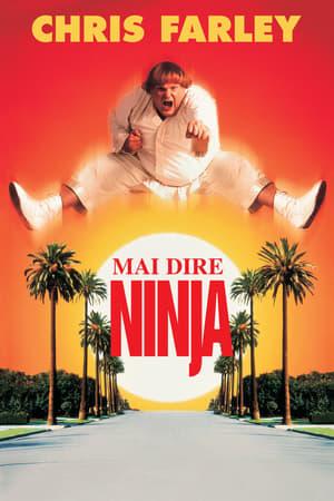 Mai dire ninja 1997 Streaming Altadefinizione