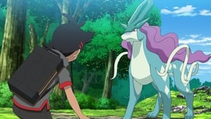 Getting a Legend?! Search for Suicune, the Guardian Deity of Water!!
