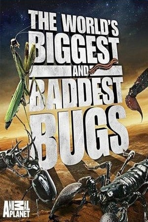 The World's Biggest and Baddest Bugs (2009)