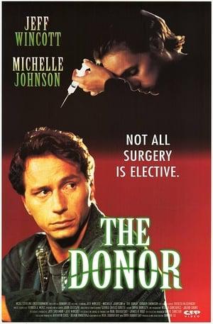 The Donor-Emmanuelle Chriqui