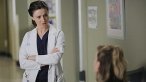 Grey's Anatomy: 12 Temporada x Episódio 6