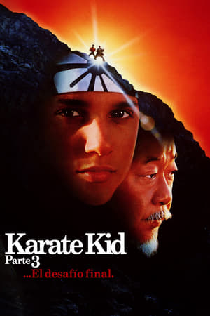 Ver Karate Kid III. El desafío final (1989) Online