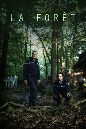 La Forêt Saison 1 HDTV 720p FRENCH Complète