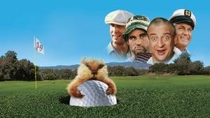 cattura di Palla da golf