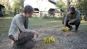 The Walking Dead Temporada 4 Episodio 14