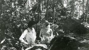 The Garden of Torment (1976)