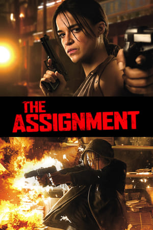 The Assignment-Caitlin Gerard