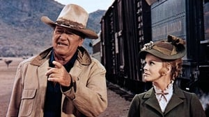 The Train Robbers 1973