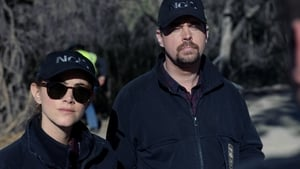 Navy: Investigación criminal - Mentiras de familia episodio 13 online