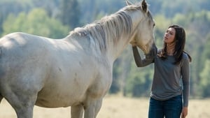 Heartland Season 12 :Episode 10  All Hearts Lead Home