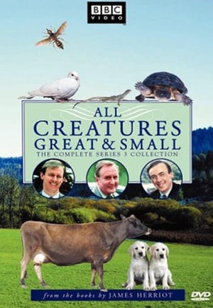 All Creatures Great and Small - Season 3 - Azwaad Movie Database