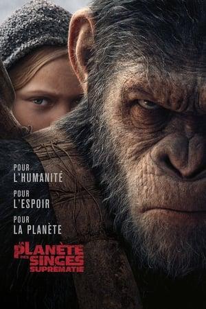 Image La Planète des singes : Suprématie