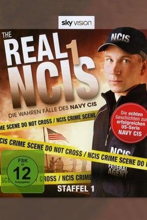 The Real NCIS (2009)