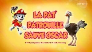 PAW Patrol: 5×2