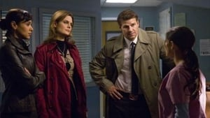 Bones - The Doctor in the Den episodio 18 online