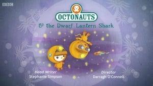 The Octonauts: 1×44