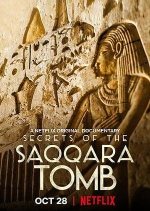 Image Secrets of the Saqqara Tomb