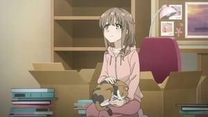 Seishun Buta Yarou wa Bunny Girl Senpai no Yume wo Minai: 1×13