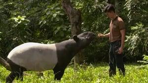 72 Cutest Animals: 1×7