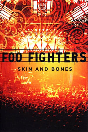 Image Foo Fighters: Skin and Bones