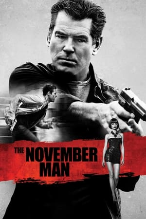 The November Man (2014) is one of the best movies like Xxx: Return Of Xander Cage (2017)