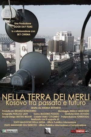 Nella terra dei merli: Kosovo tra passato e futuro (2016)