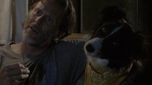 Ein Hund namens Duke (2012)