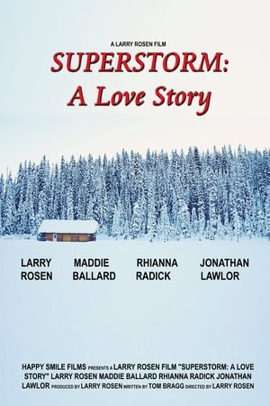 Superstorm A Love Story