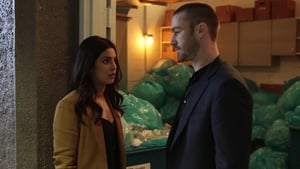 Quantico: Season 2x episode 20 HD Download or watch online – VIRANI MEDIA HUB