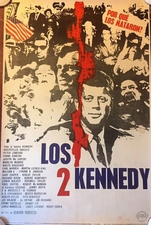 The Two Kennedys