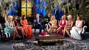 The Real Housewives of New York City: 9×20