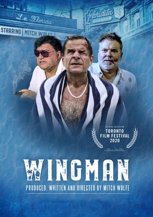 WingMan 2020 Full Movie