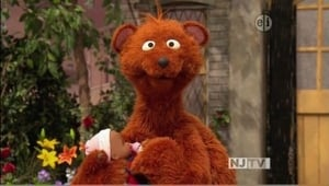 Sesame Street Season 42 :Episode 11  Baby Bear's doll
