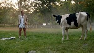 Bull Sezon 1 odcinek 4 Online S01E04
