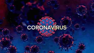 Coronavírus: Como Tudo Começou