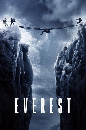 Everest (2015) is one of the best movies like Frozen (2013)